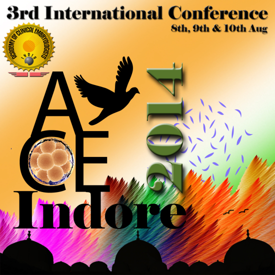 Official ACE 2014 Logo