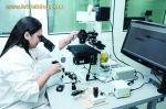 Infertility Fertility IVF Training Programs - IVF TRAINING PROGRAM DATES