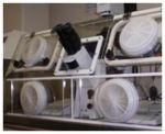 IVF Training - Embryology Training - Embryologist Training - EMBRYOLOGIST & GYNAECOLOGIST